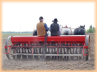 Four abreast on the drill at 2008 Field Day